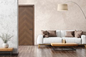 Modern Interior Door in Living Room