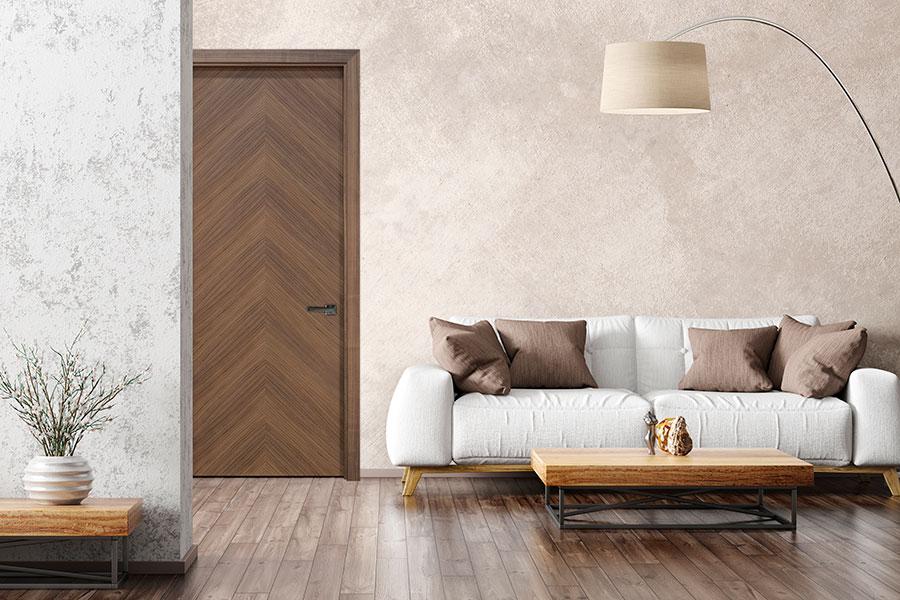 Modern Interior Door in Living Room